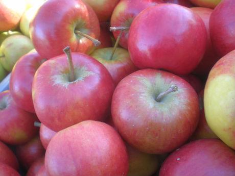 äpple hård i magen